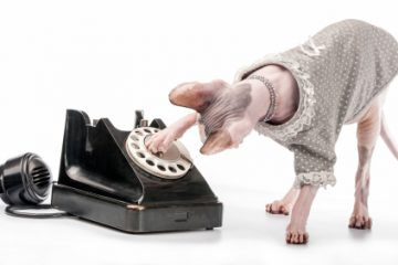 Cómo montar un call center