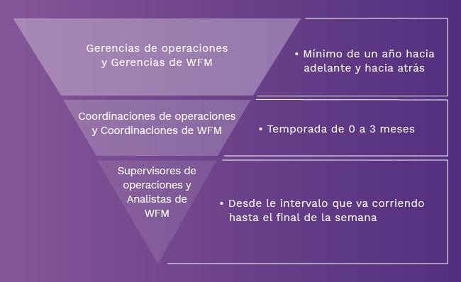 Proceso de analítica y WFM